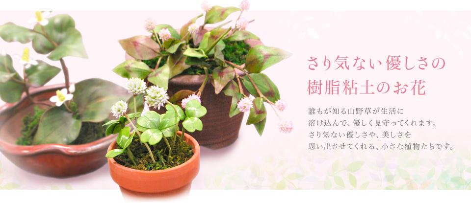 さり気ない優しさの樹脂粘土のお花 誰もが知る山草や草花が生活に溶け込んで、 優しく見守ってくれます。 さり気ない優しさや、美しさを思い出させてくれる 小さな植物たちです。